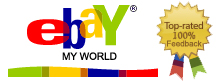 ebay world logo